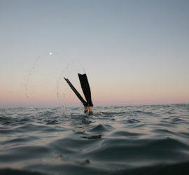 Freediving on the WIld Dayrell, a Blockade Runner wreck from the Civil War near Wrightsville BEach, NC.
